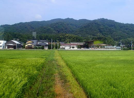 bt_bata17c.jpg