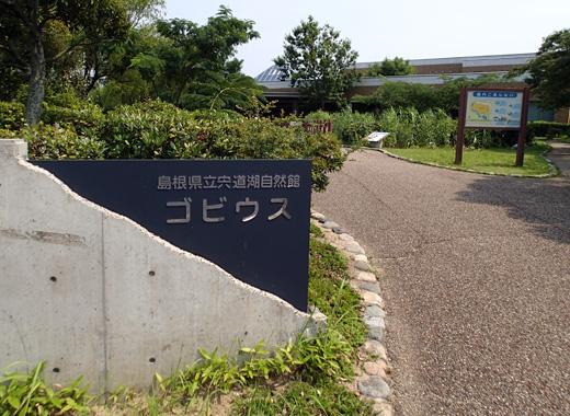 bt_bata32b.jpg